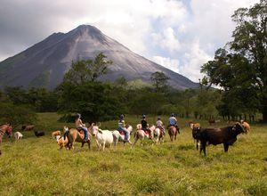 Costa Rica La Fortuna Pferd