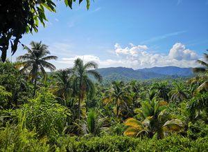 Kuba-Baracoa-Humboldt-Nationalpark-Wanderung2