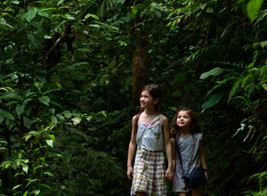 Costa Rica Regenwald Kinder iStock 1161480956