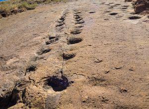 Bolivien Toro Toro Spuren Dinosaurier iStock 1041324514