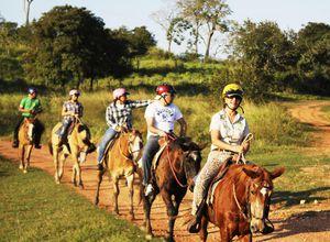 Brasilien-Pantanal-Reitausflug-Foto-Roberta-Coelho