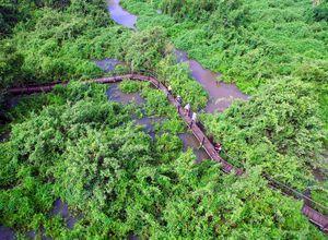 Brasilien-pantanal-fazendasanfrancisco