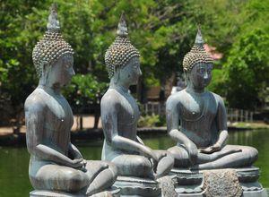 Sri Lanka Colombo See Buddha Reise