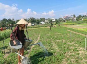 Vietnam Hoian Gemuesedorf Bauern Einheimische Kochkurs