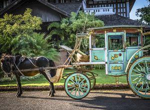Myanmar Pyin U Lwin Kutsche Fahrt Pferde Transportmittel
