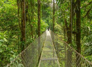 Costa Rica Monteverde iStock 517511066
