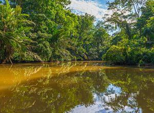 Costa Rica Tortuguero iStock 938246268