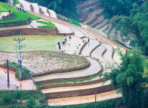 vietnam sapa terrassen