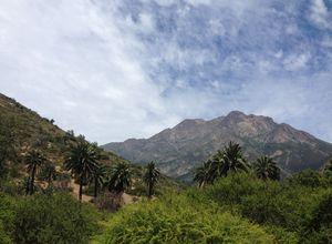 Chile Cerro La Campana