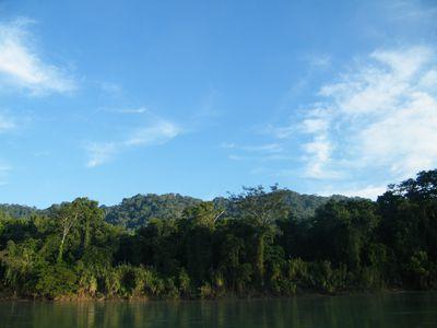 mexiko regenwald lacandonen