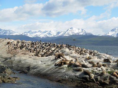 argentinien ushuaia beagle kanal