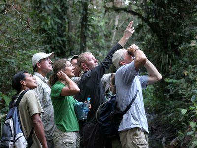 eco amazonia lodge touristen