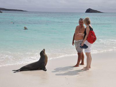 ecuador galapagos seeloewe touristen