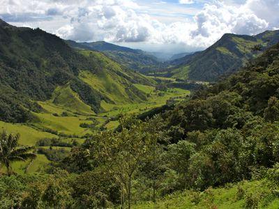 Das Cocora Tal in der Kaffeezone von Kolumbien