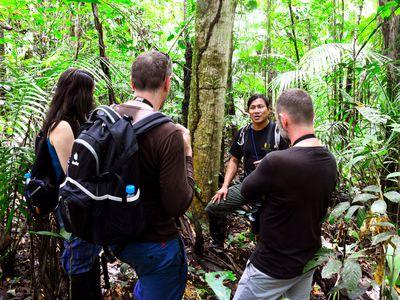 Dschungelwanderung im Amazonasgebiet, Ecuador