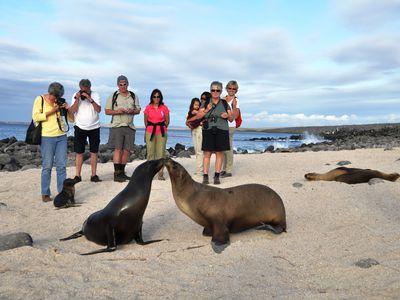 Inselhopping auf den Galapagosinseln