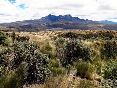 Ruminahui Vulkan in Ecuador