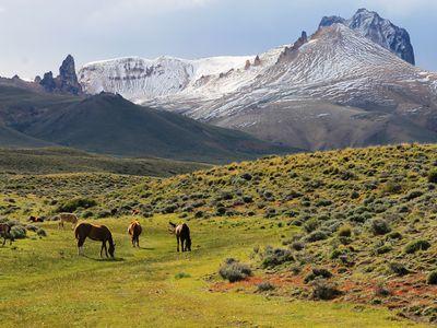 chile aisen parque nacional jeinimeni (28)