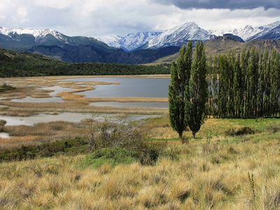 chile carretera austral parque nacional patagonia (20)