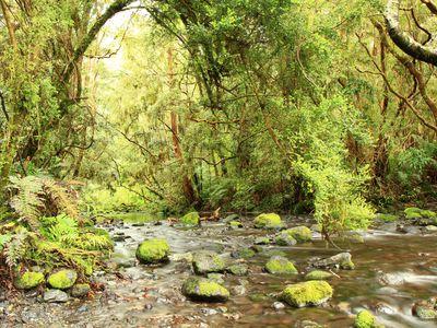 chile np vicente perez rosales laguna verde melanie