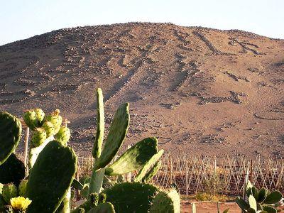 Chile Valle Azapa Geoglyphen