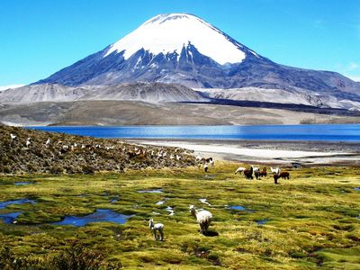 Chile Lauca Nationalpark Lago Chungara 2