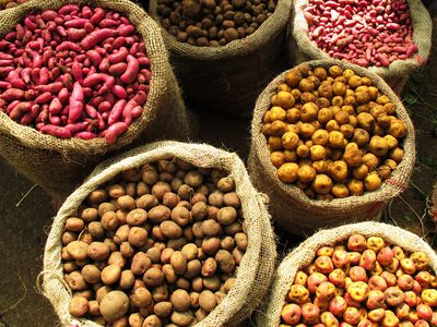 Kolumbien bunter Markt mit Gemüse