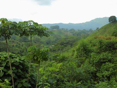 Kolumbien Ciudad Perdida (2)