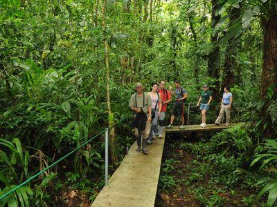 Costa Rica Tortuguero Tour mit Guide