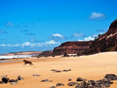 Brasilien Praia da pipa strand
