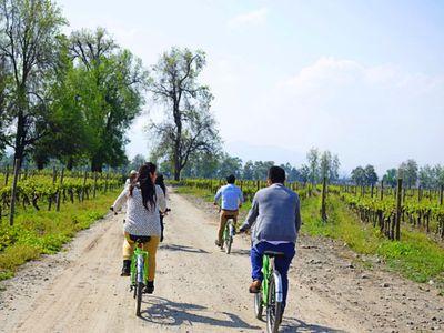 Chile Santiago Bike&Winetour