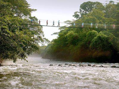 Costa Rica Puerto Viejo De Sarapiquí Tirimbina Bridge