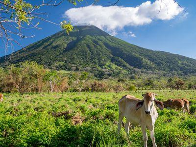 Nicaragua Insel Ometepe Vulkan