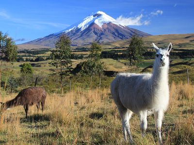 Ecuador Rundreise Cotopaxi Nationalpark