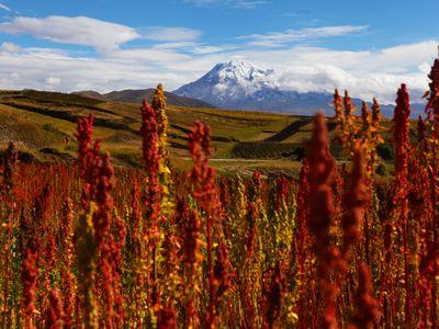 Ecuador de Lasso a riobamba