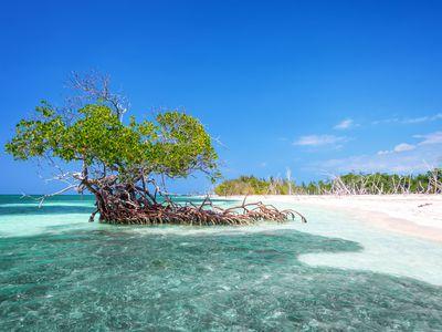 Kuba Strand Cayo Levisa