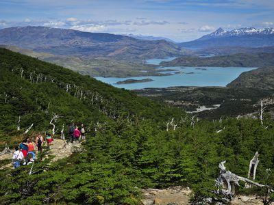 Chile_W-Trek_Trek_Valle_Francés_fantasticosur