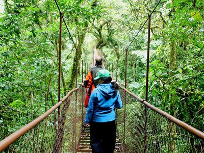 Panama Boquete Hanging Bridges