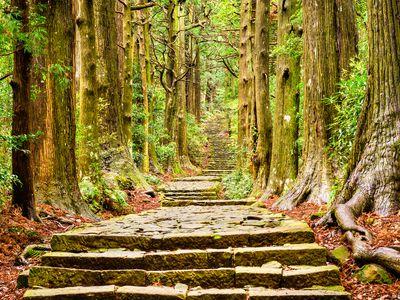 Japan Kumano Kodo Wanderung iStock 586195090