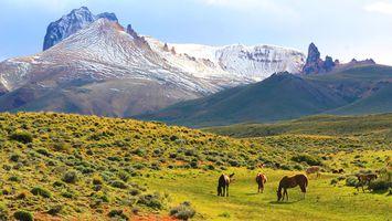 Parque Nacional Jeinimeni (28)
