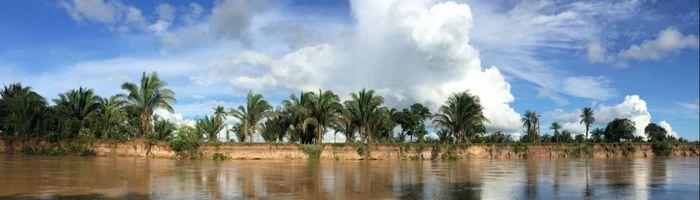 Kolumbien Los Llanos Wasser und Palmen Aromabild
