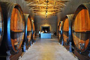 Argentinien Mendoza Weintour 3