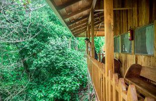 Costa Rica LosCampesinos Balcony2