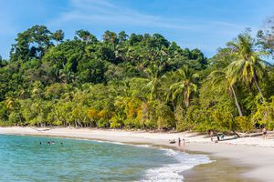 Costa Rica Manuel Antonio Nationalpark iStock 639929902